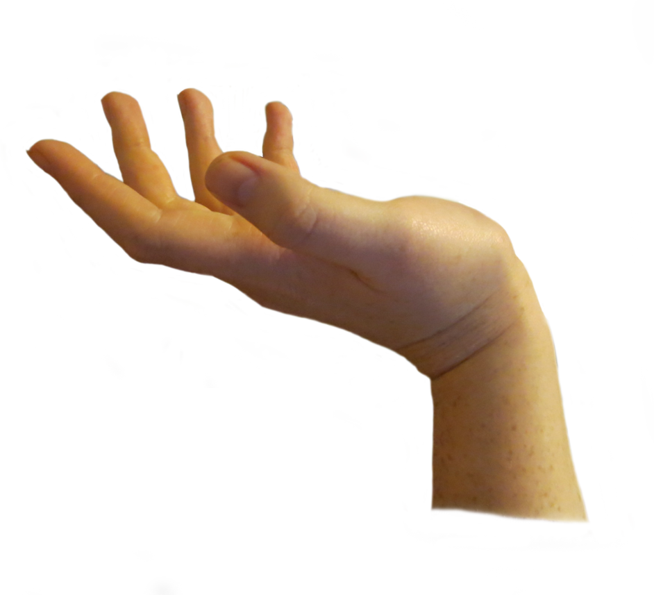 Hands seventy isolated stock. Fingers clipart six finger