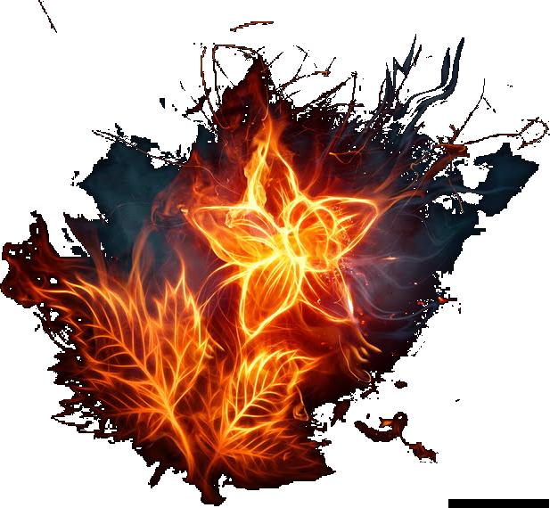 Psd official psds share. Fire flower png