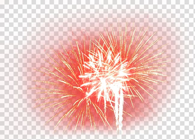 Firecracker clipart firework 2016.  san pablito market