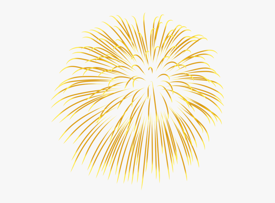 Firecracker clipart yellow. Fireworks blue plant symmetry