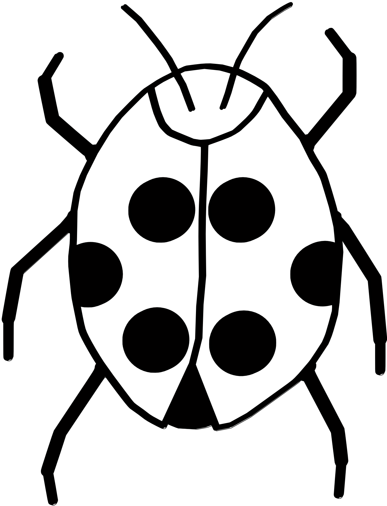 Black and white panda. Fly clipart beetle