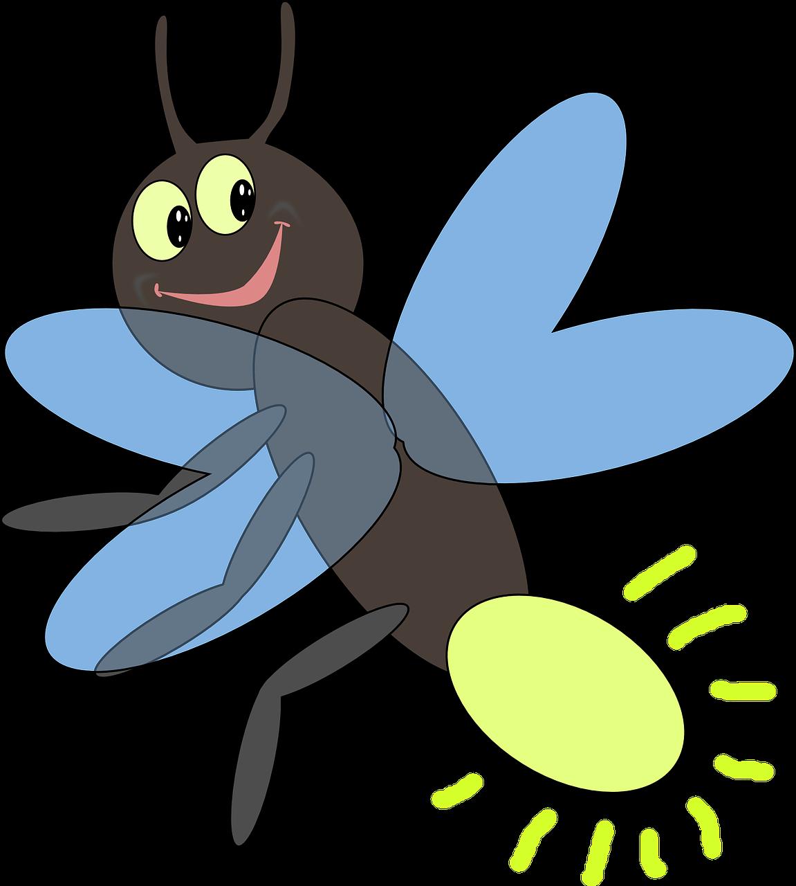 Mosquito invertebrate