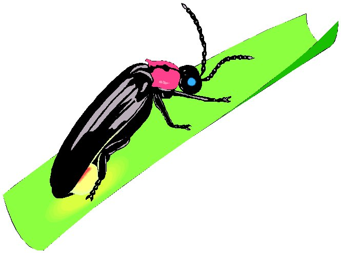 Free cliparts download clip. Firefly clipart flying