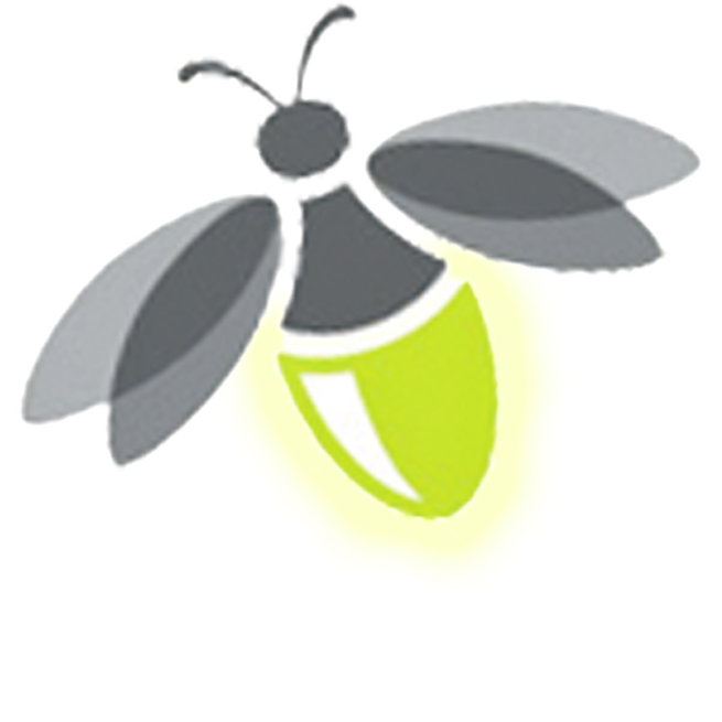 Firefly clipart transparent background. Png images free download