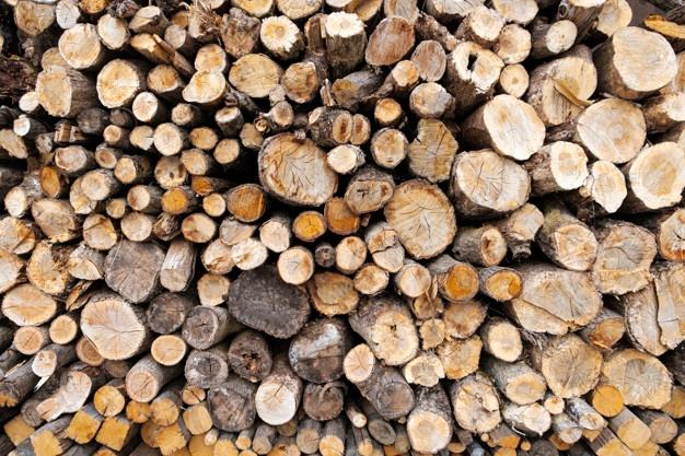 Firewood clipart single wood log. Vectors photos and psd