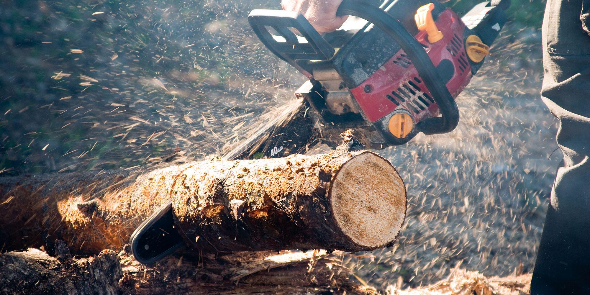 Splitting how to split. Firewood clipart single wood log