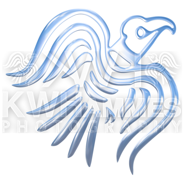 Fish clipart bird. Collection of free blued