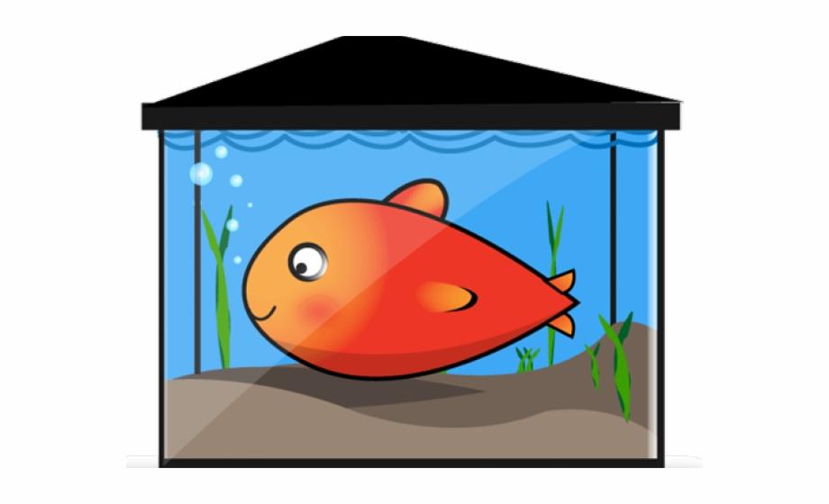 Aquarium breathing in a. Goldfish clipart fishtank