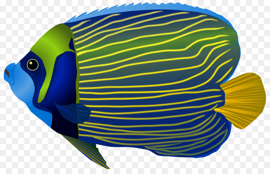 Fish clipart coral reef fish. Background png download free