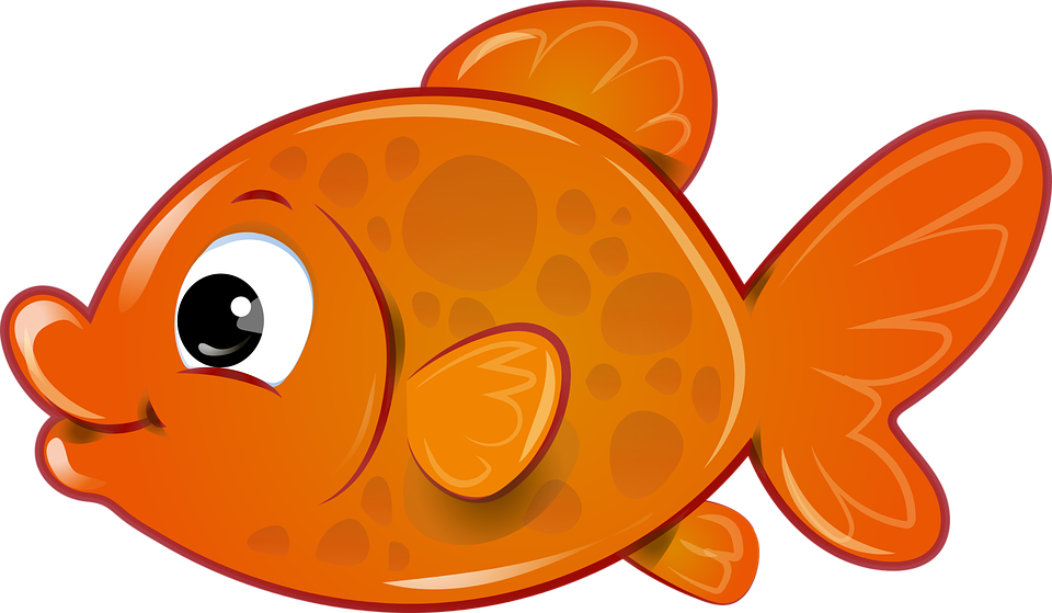 Collection of free fished. Goldfish clipart dead goldfish