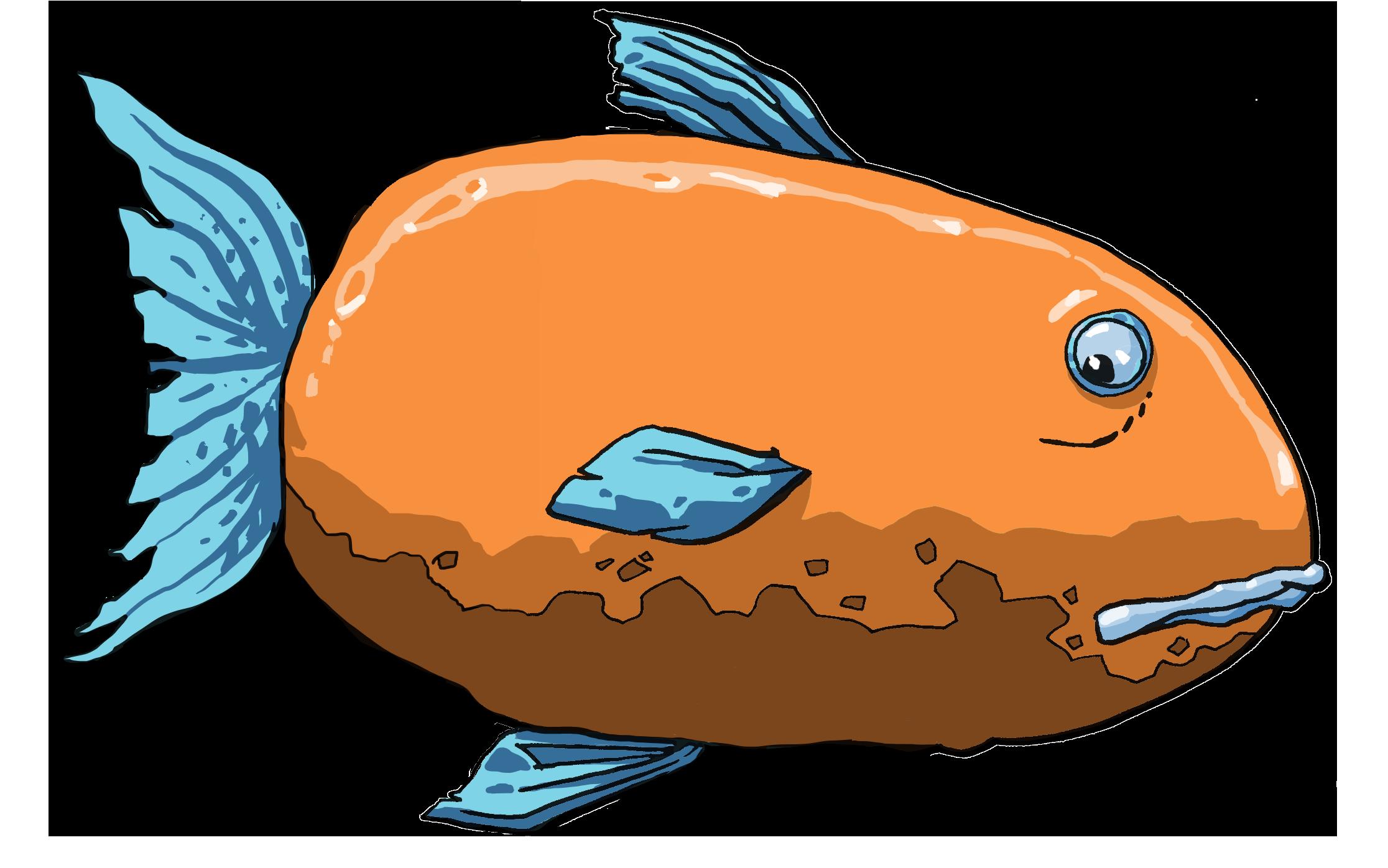 Fish clipart food. Dreng marine biology clip