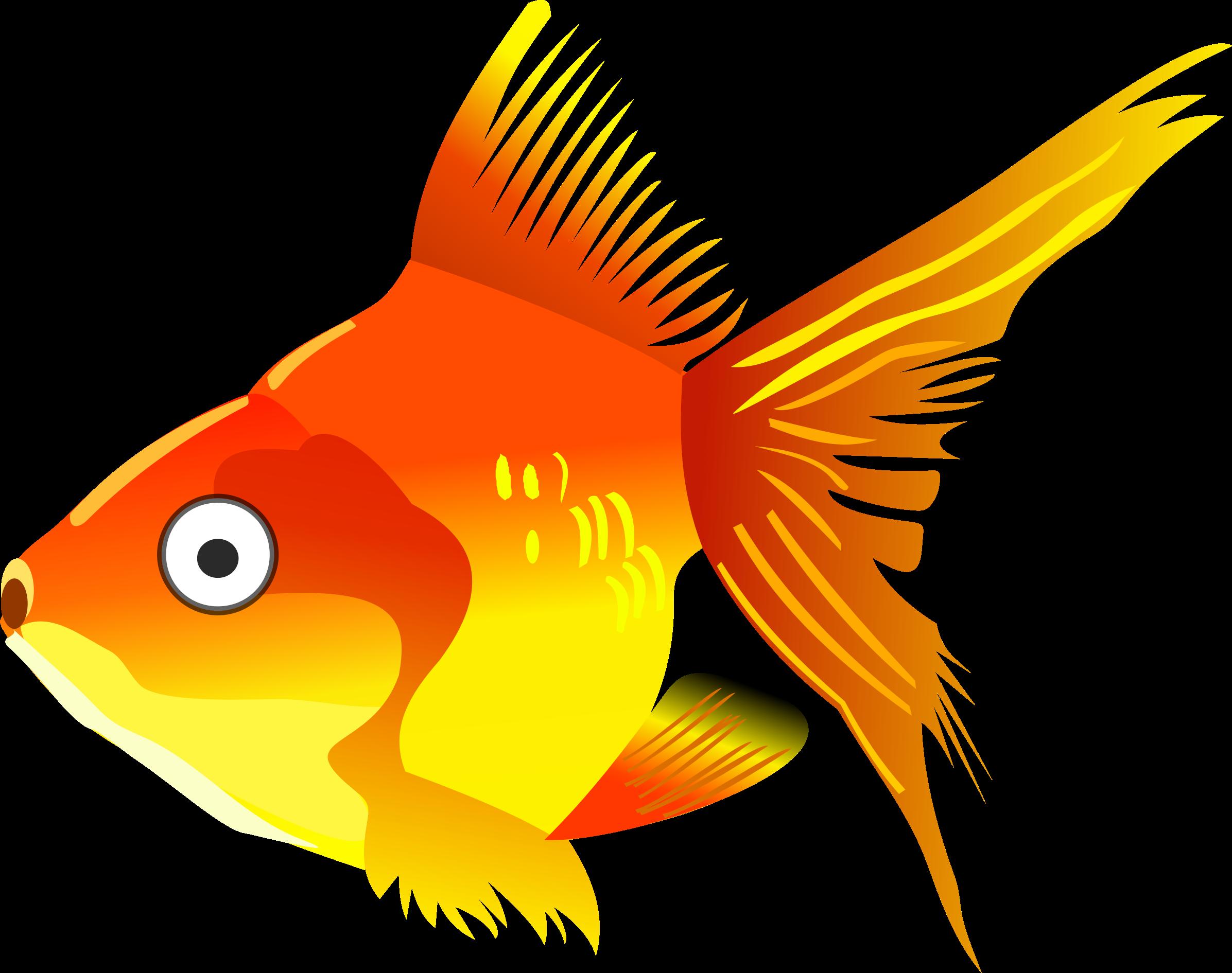 Cartoon big image png. Fish clipart goldfish