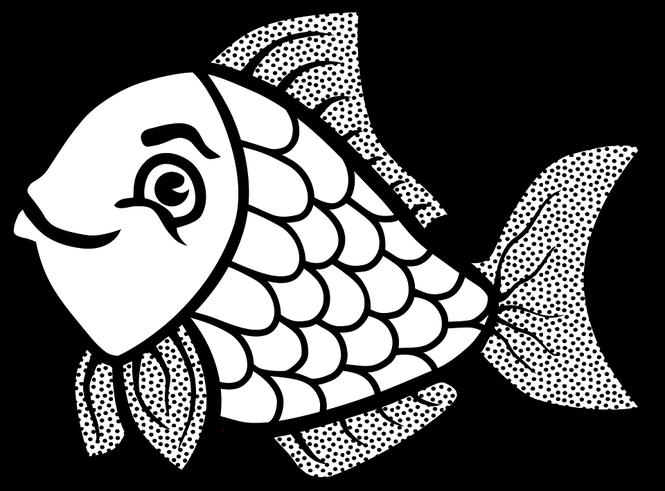 Fish clipart hito.  catfish animated huge