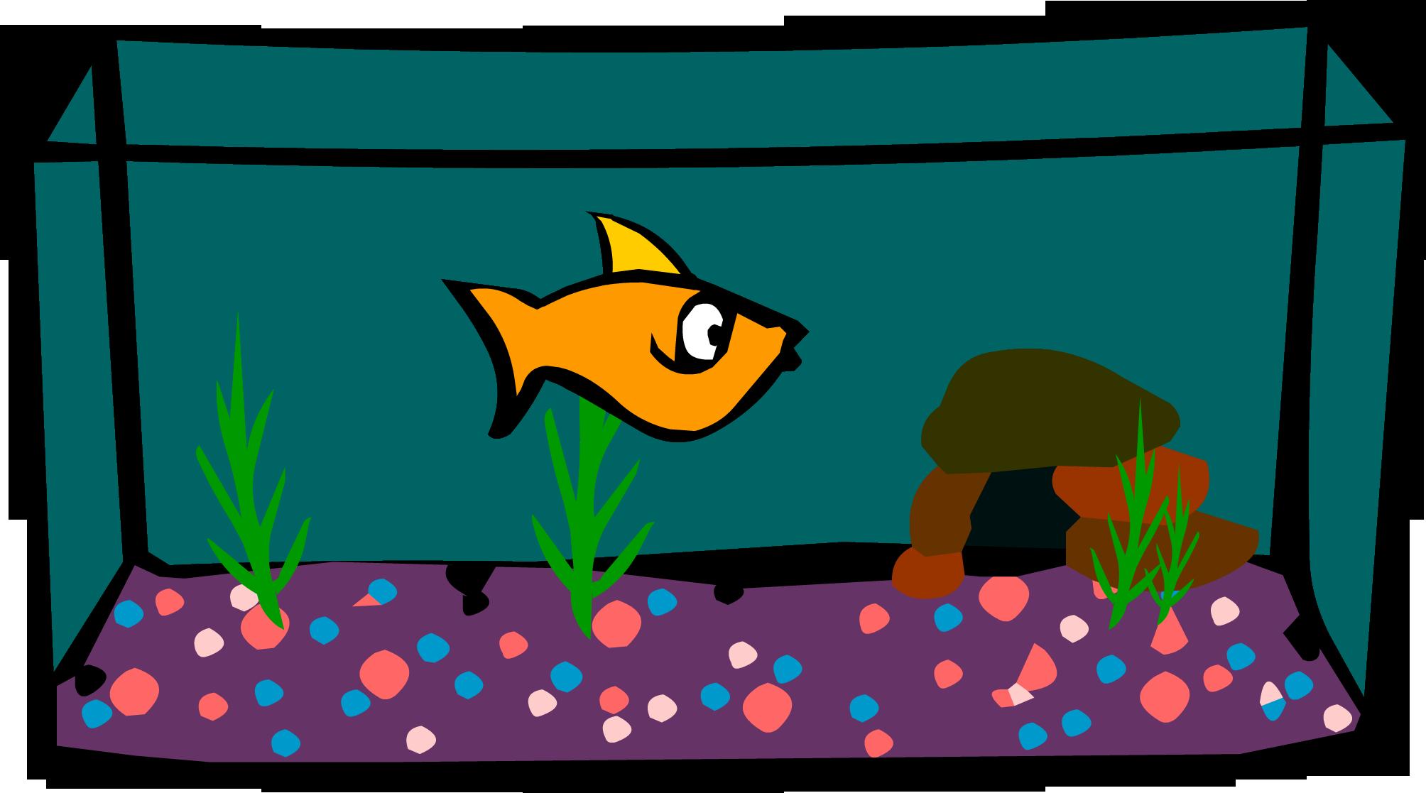 Tank free download best. Aquarium clipart fish bowl
