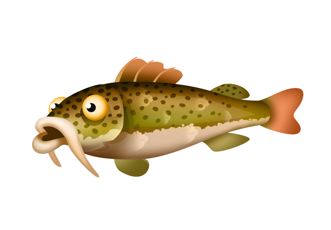Fishing list hay day. Trout clipart speckled trout