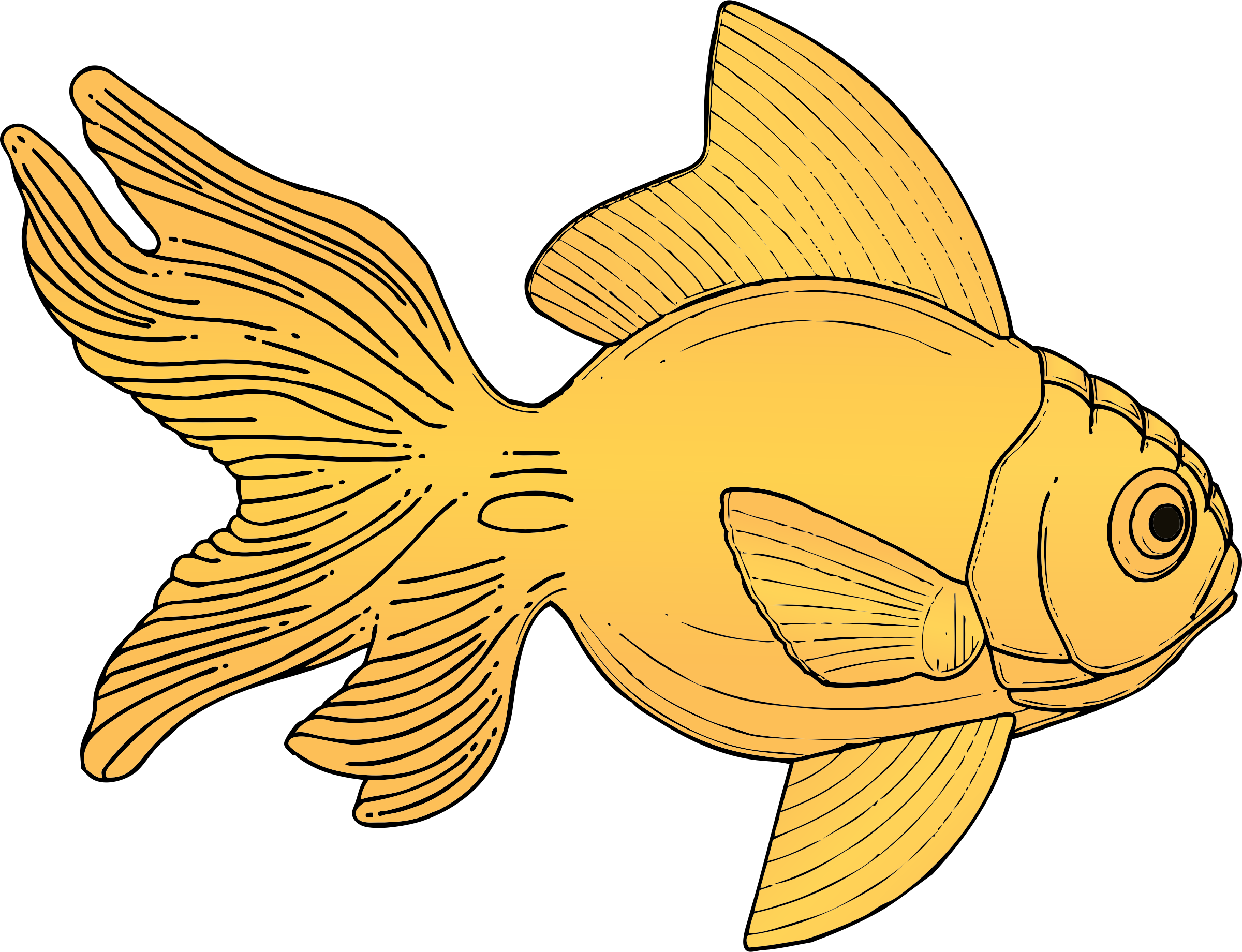 Goldfish objects