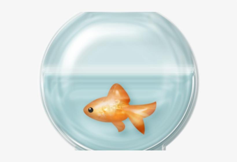Bowl aqua png . Fishbowl clipart empty fish tank