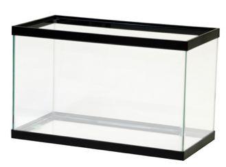 Free fish tank download. Fishbowl clipart empty square aquarium
