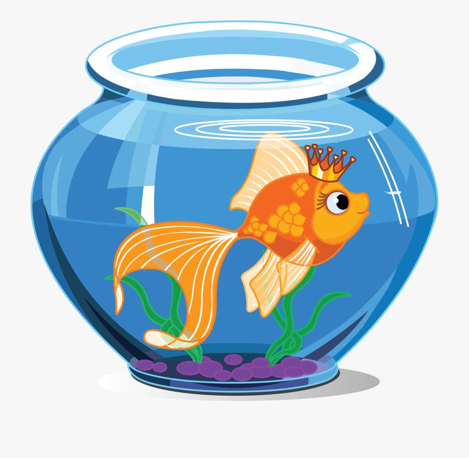 Fishbowl clipart turtle tank. Pet fish inside the
