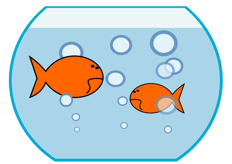 House fingerplays mansfield richland. Fishbowl clipart two