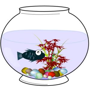 Fishbowl clipart vector. Clip art panda free