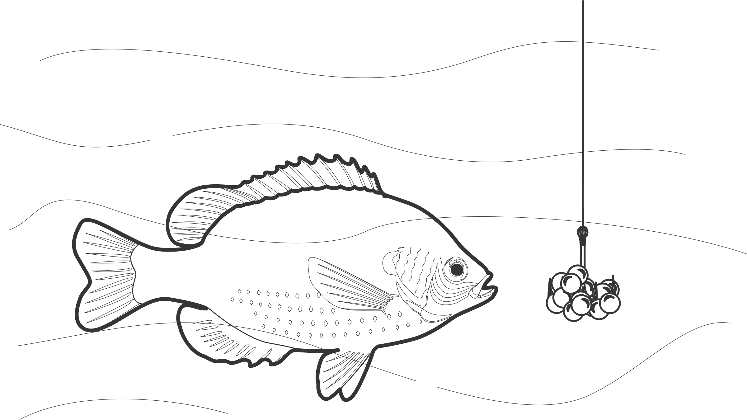 Lure drawing at getdrawings. Worm clipart fishing worm