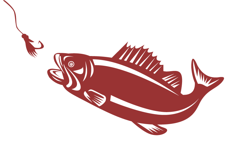 Trout clipart wide mouth bass. Largemouth fly fishing for