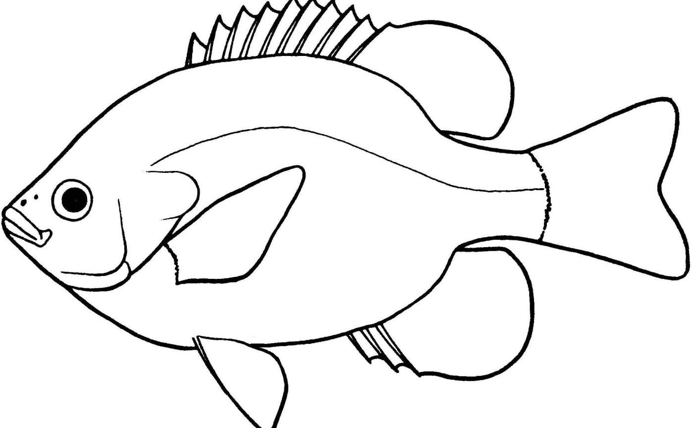 Goldfish clipart jpeg. Lovely of fish black