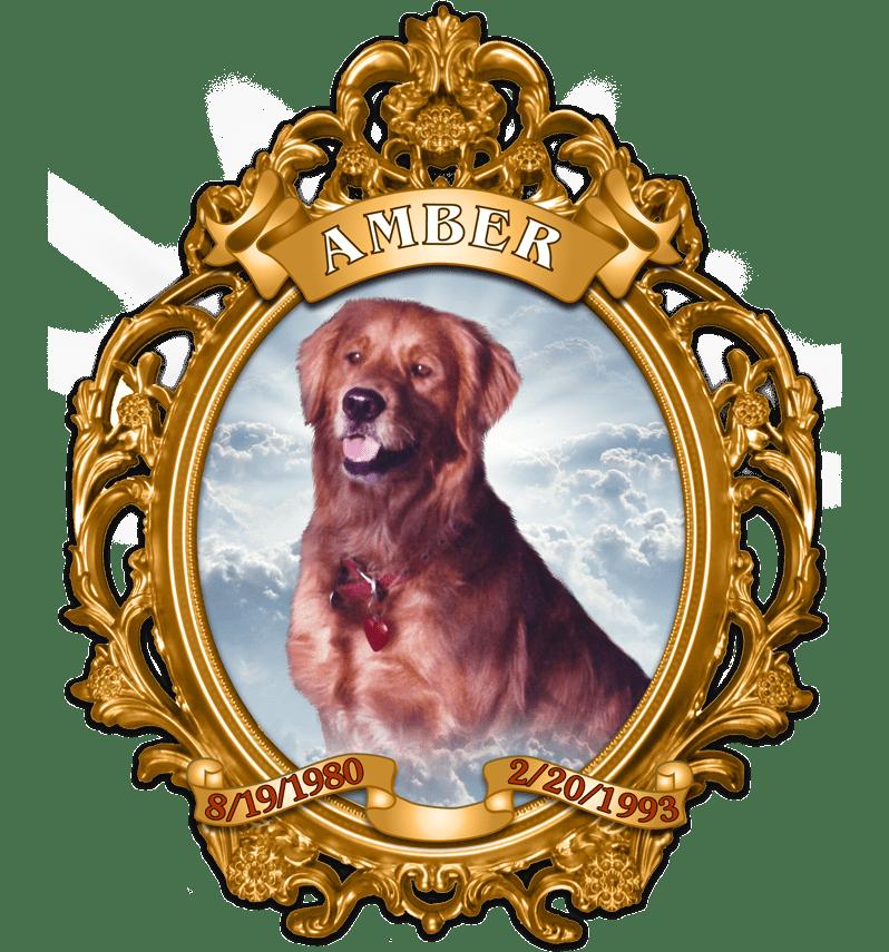 Pet memorial angelsspirit graphix. Fishing clipart dog
