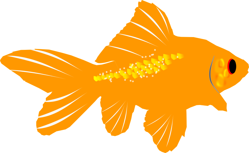 Fishing clipart fishing pond. Gold fish free download