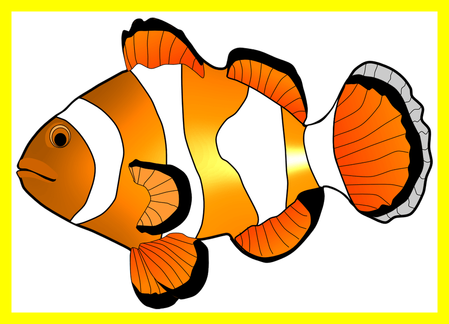 fishing clipart illustration
