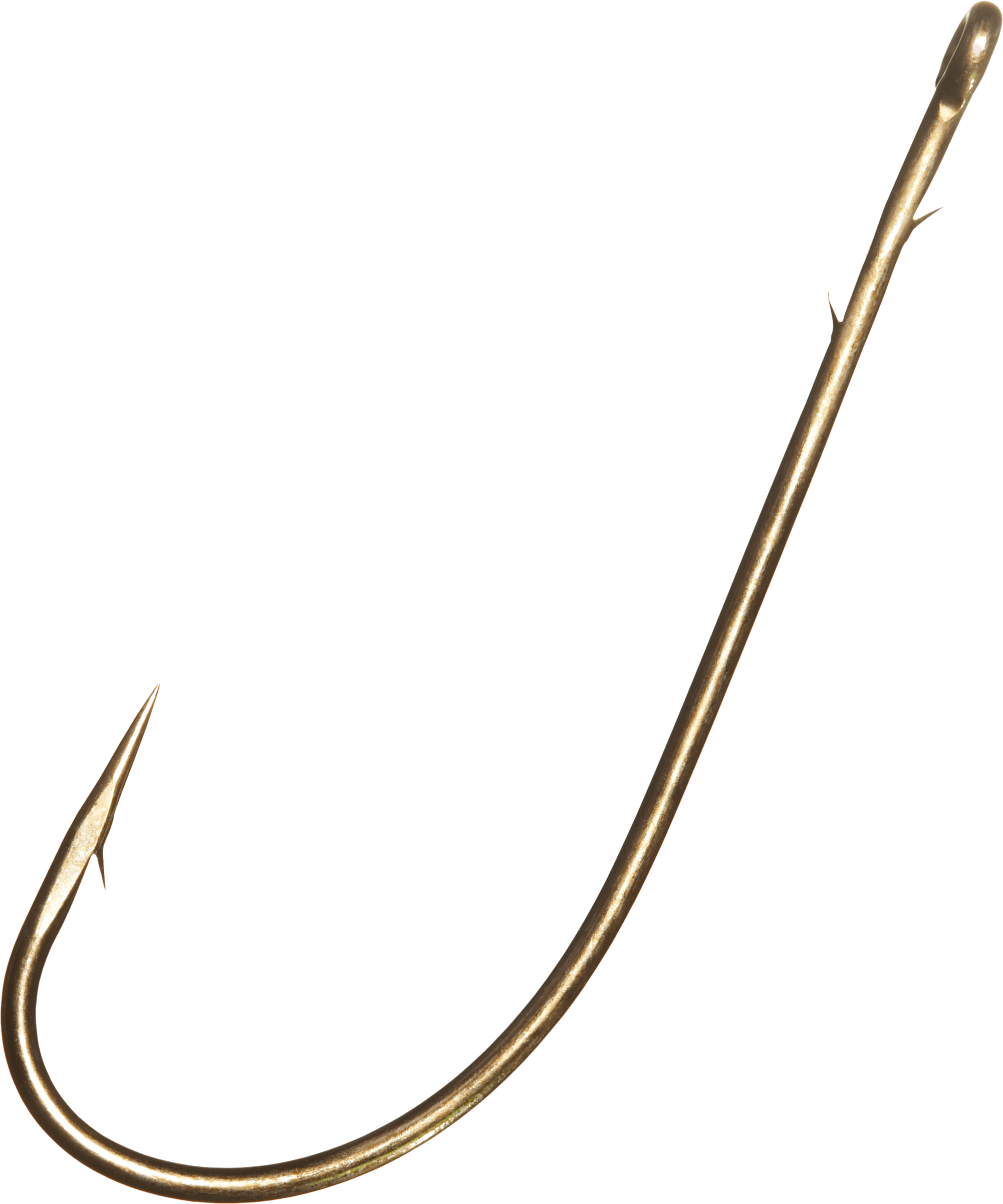 Fishing hook png transparent. Worm clipart hookworm
