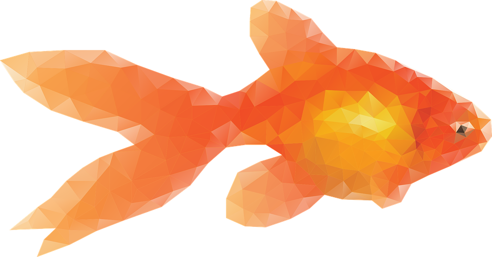 Goldfish free images on. Fishing clipart watercolor