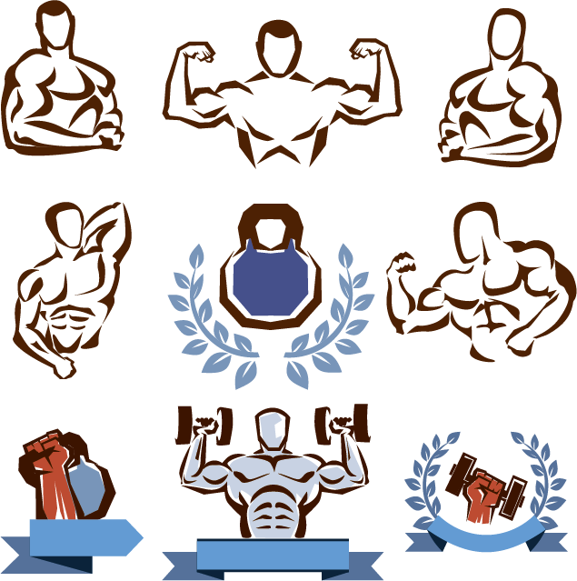 Fitness clipart hand weight. Centre physical training clip