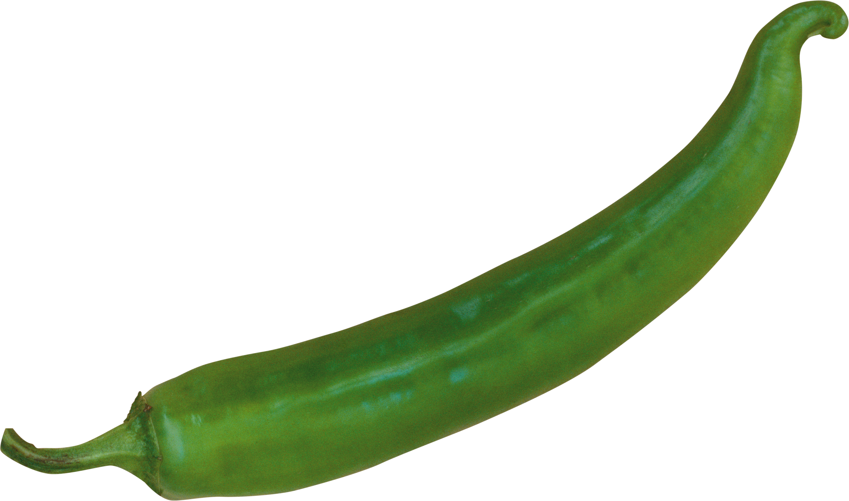 Hot chili eight isolated. Pepper clipart serrano pepper
