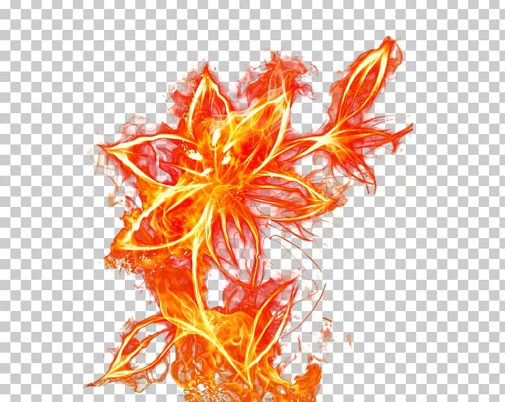 Flames clipart fire flower. Flame png blooming euclidean