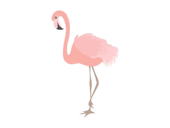 Digital bird exotic coral. Flamingo clipart