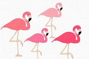 Cute illustrations creative market. Flamingo clipart