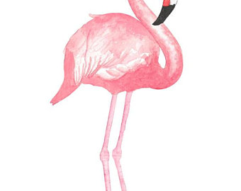 Flamingo clipart. Etsy watercolor tropical bird