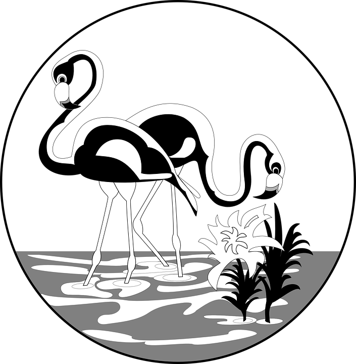 Flamingo clipart face. Collection of cliparts buy