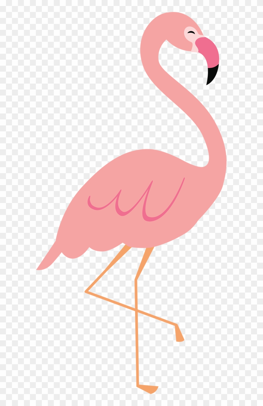 x greater pinclipart. Flamingo clipart five