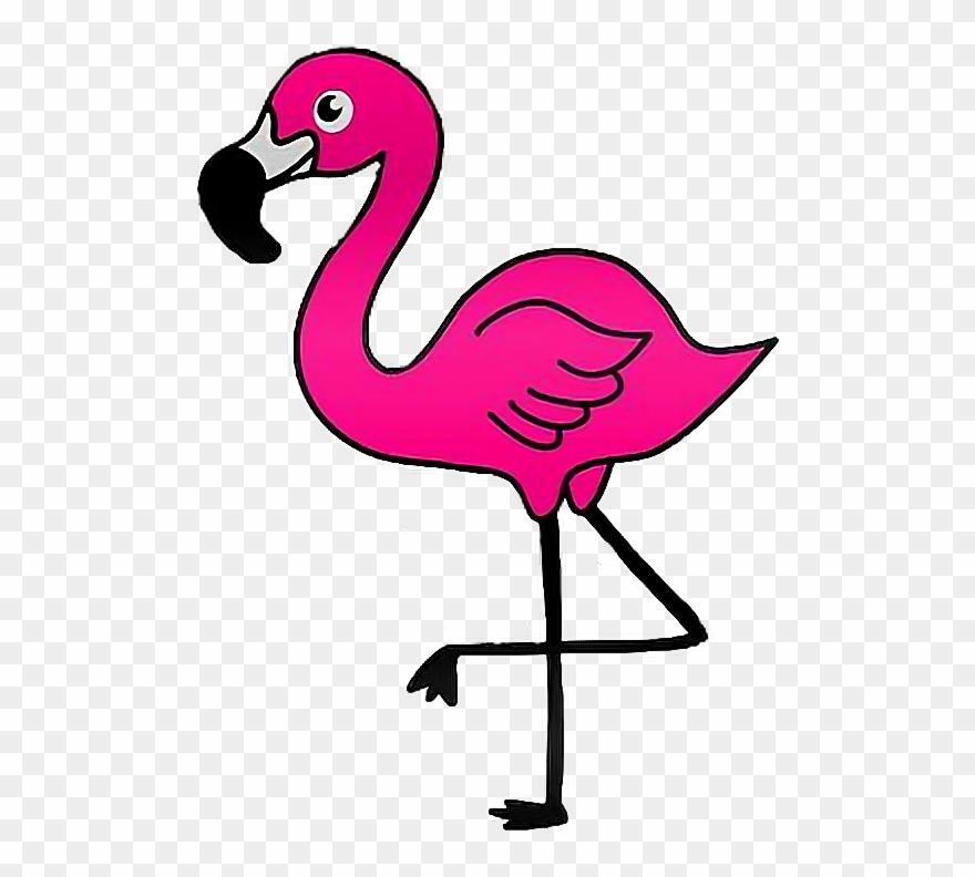 Report abuse clip art. Flamingo clipart five