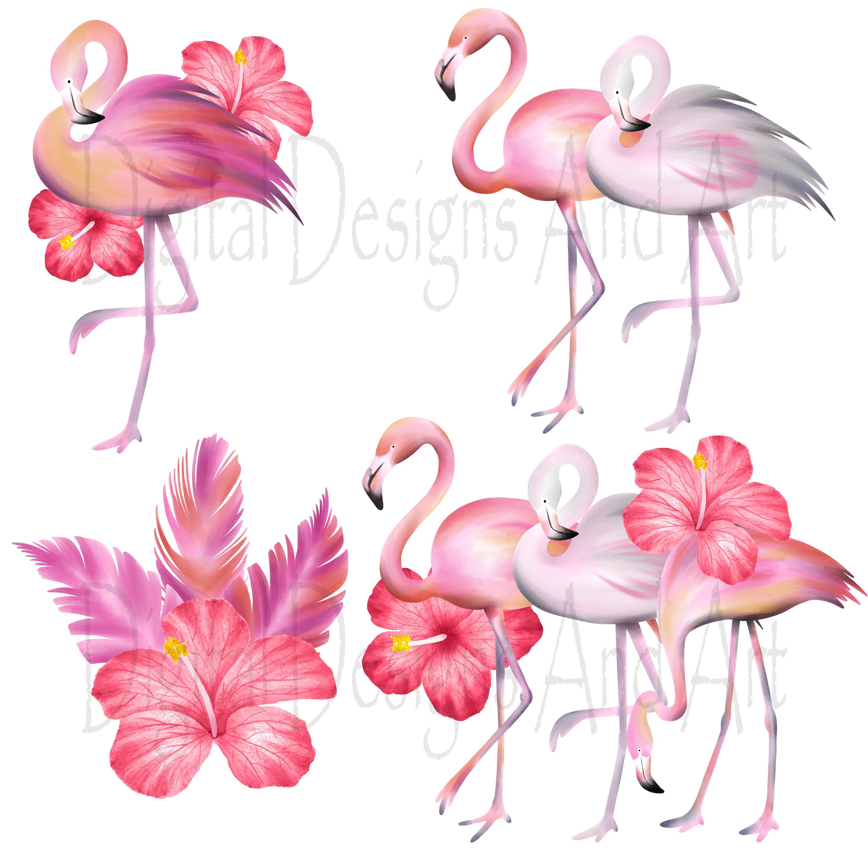 Pink . Flamingo clipart five
