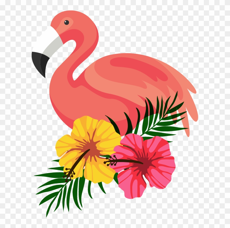 Beautiful frame flower beautifully. Hawaiian clipart flamingo