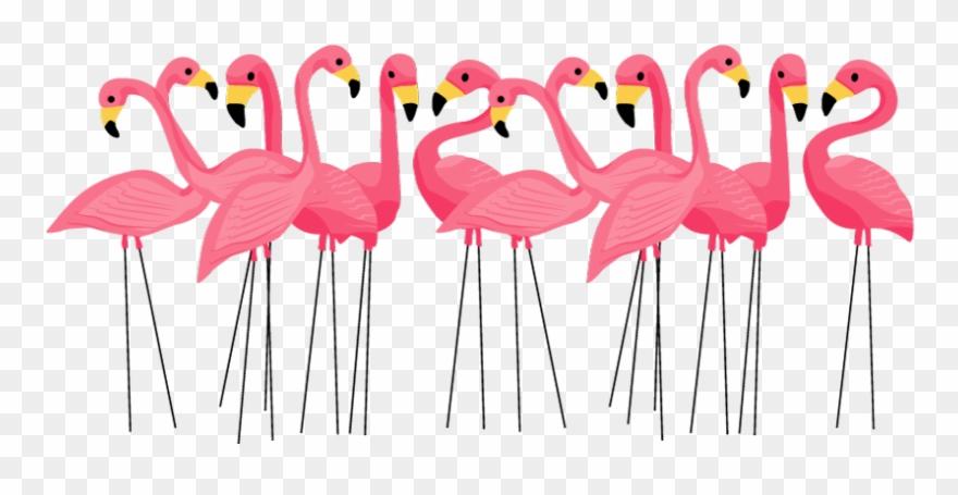 Flamingo clipart group. Blog marylouwade christmas