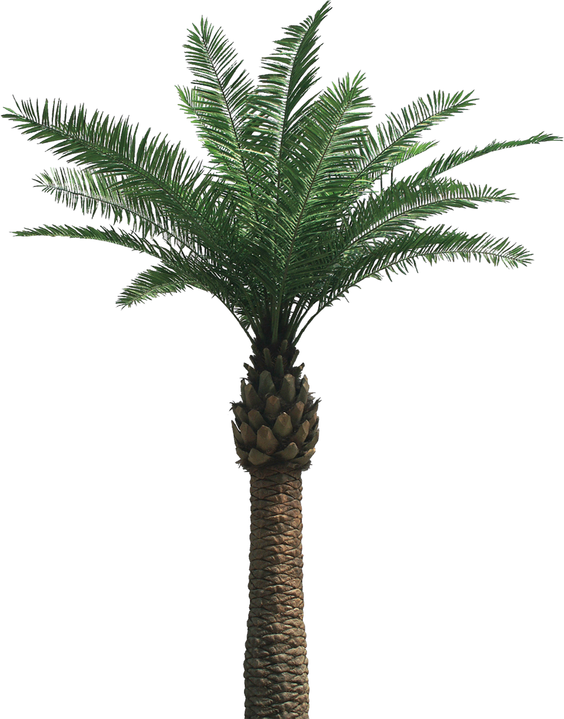 Artificial tree and cocotree. Palm clipart 8 bit