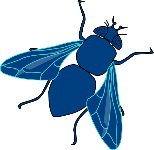 Fly clipart summer. Blue clip art at