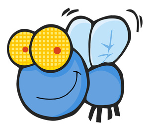 Fly clipart animated. Free image animal photos