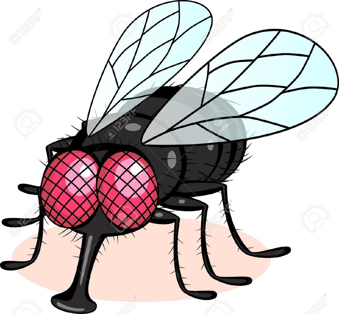 Fly clipart comic. Stock vector in thegioidongvat