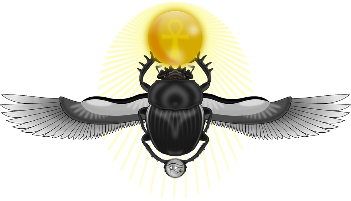 What is the meaning. Flies clipart beetle